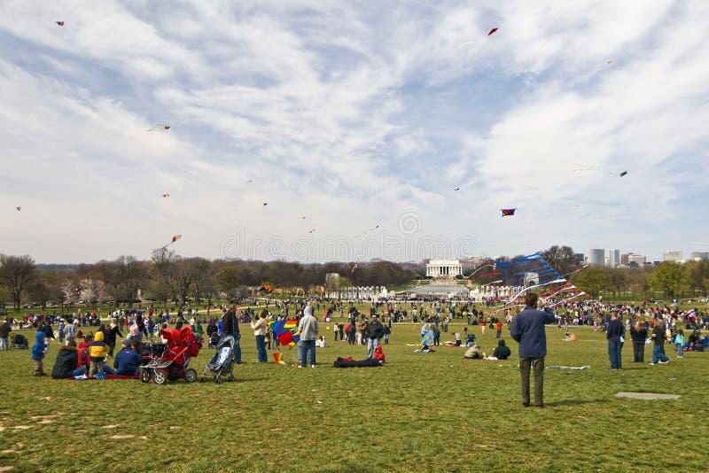 Festival do papagaio fotos de stock