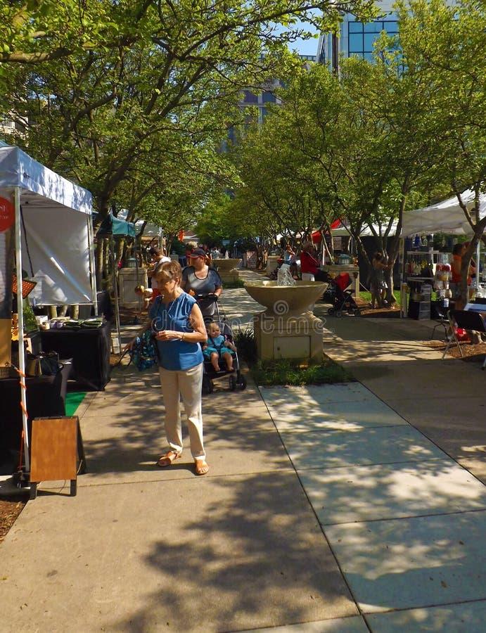 Festival en el parque, Roanoke, Virginia, los E.E.U.U. imagen de archivo libre de regalías
