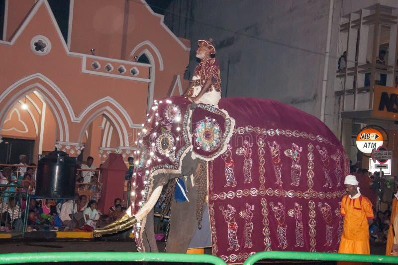 Download Festival Esala Perahera In Kandy Auf Sri Lanka Redaktionelles Stockfoto - Bild von zahn, elefanten: 96926868