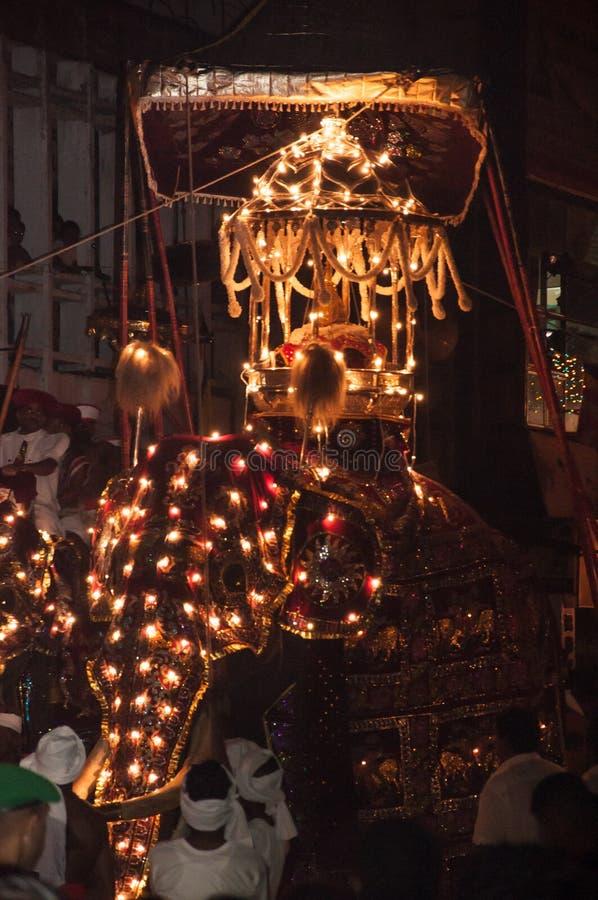 Download Festival Esala Perahera In Kandy Auf Sri Lanka Redaktionelles Bild - Bild von heilig, august: 96927225