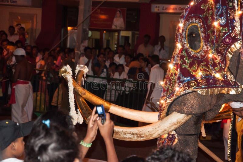 Download Festival Esala Perahera In Kandy Auf Sri Lanka Redaktionelles Stockbild - Bild von feuer, jeder: 96927239