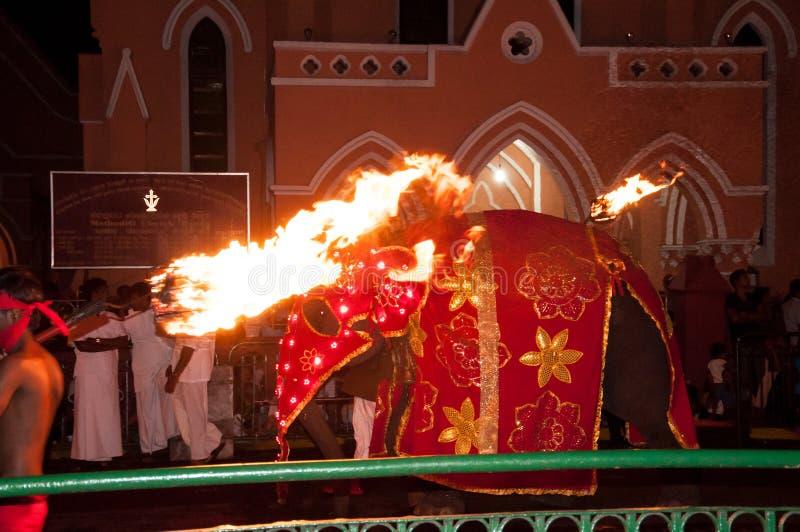 Download Festival Esala Perahera In Kandy Auf Sri Lanka Redaktionelles Bild - Bild von auch, einschließen: 96927535