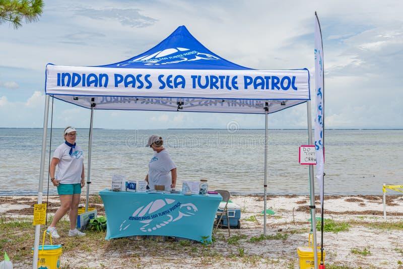 Festival esquecido da tartaruga de mar da costa foto de stock