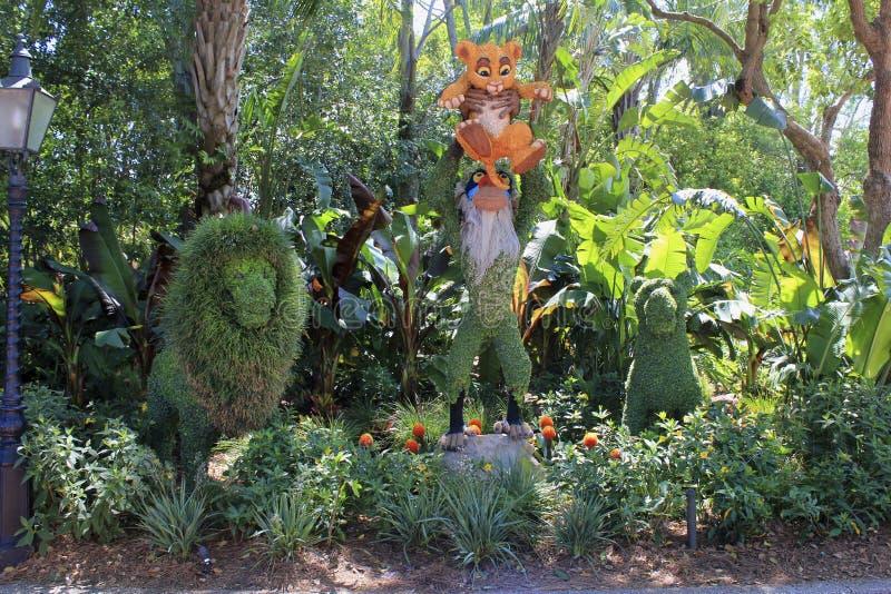 Festival för blomma för Disney världsOrlando Florida Epcot vår lejonkonungen royaltyfria bilder