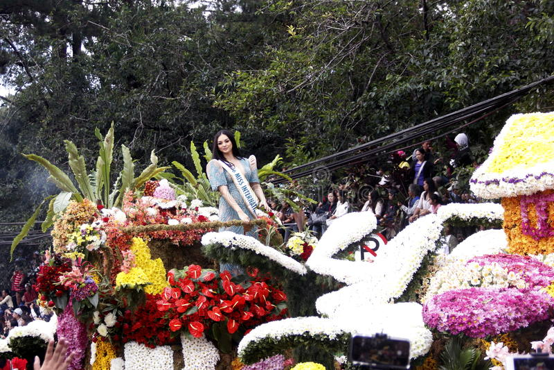Festival grande do flutuador da flor imagens de stock royalty free