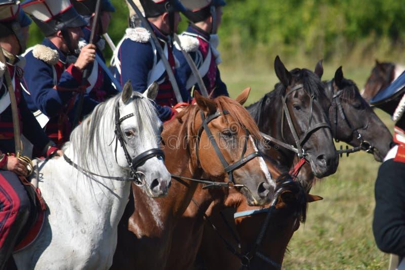 Festival historique militaire Tout-russe photo stock