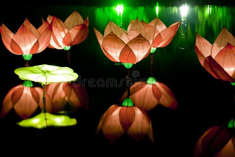 Download Festival lotus lanterns stock photo. Image of float, image - 21754130