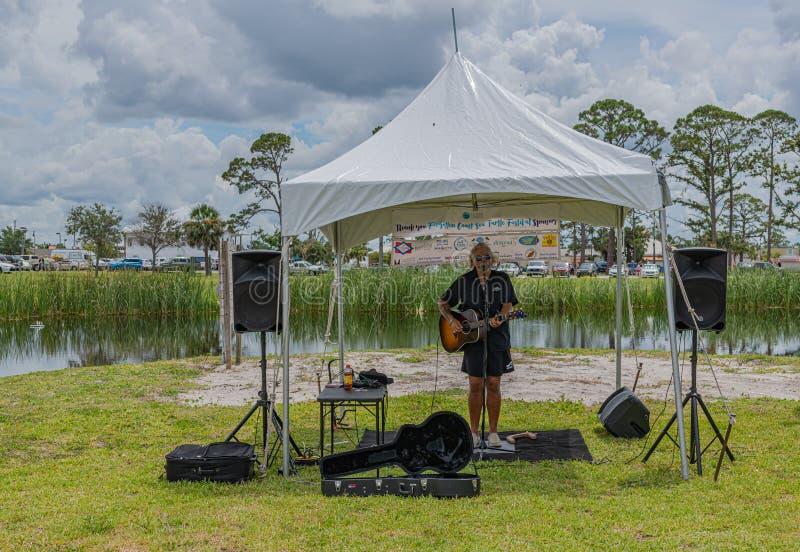 Festival oublié de tortue de mer de côte images libres de droits