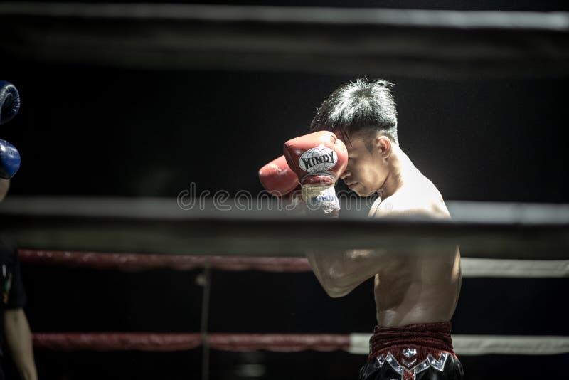 Festival tailandés de los boxeadores foto de archivo