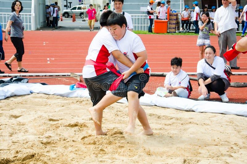 Festival 2013 van Hanmaeum het Internationale Sporten royalty-vrije stock foto