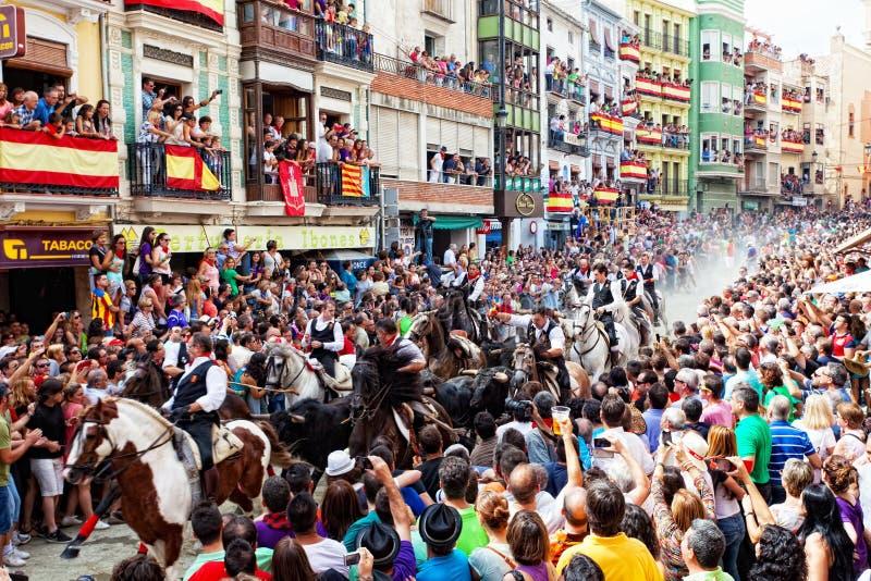 Festival von Stieren und von Pferden in Segorbe, Spanien lizenzfreie stockfotografie