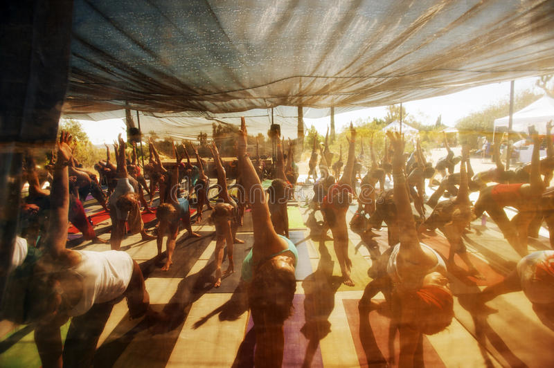 Festival Yoga Class royalty free stock images