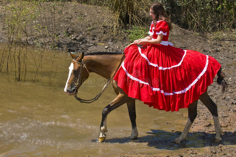 festivalgaucho fotografering för bildbyråer