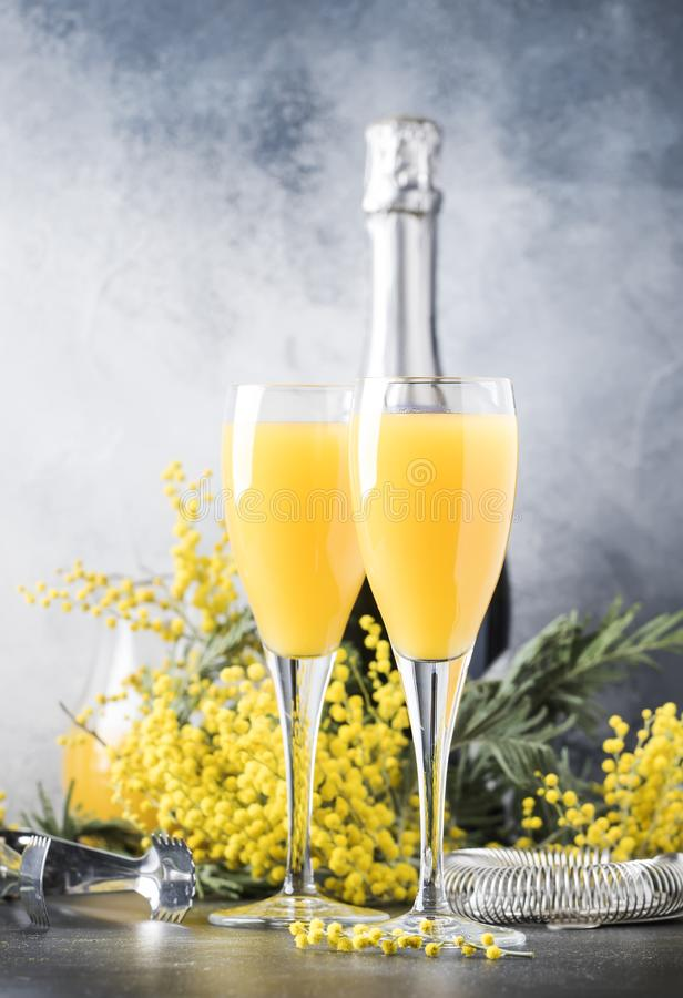 Festive alcohol cocktail mimosa with orange juice and cold dry champagne or sparkling wine in glasses, gray bar counter background royalty free stock photo