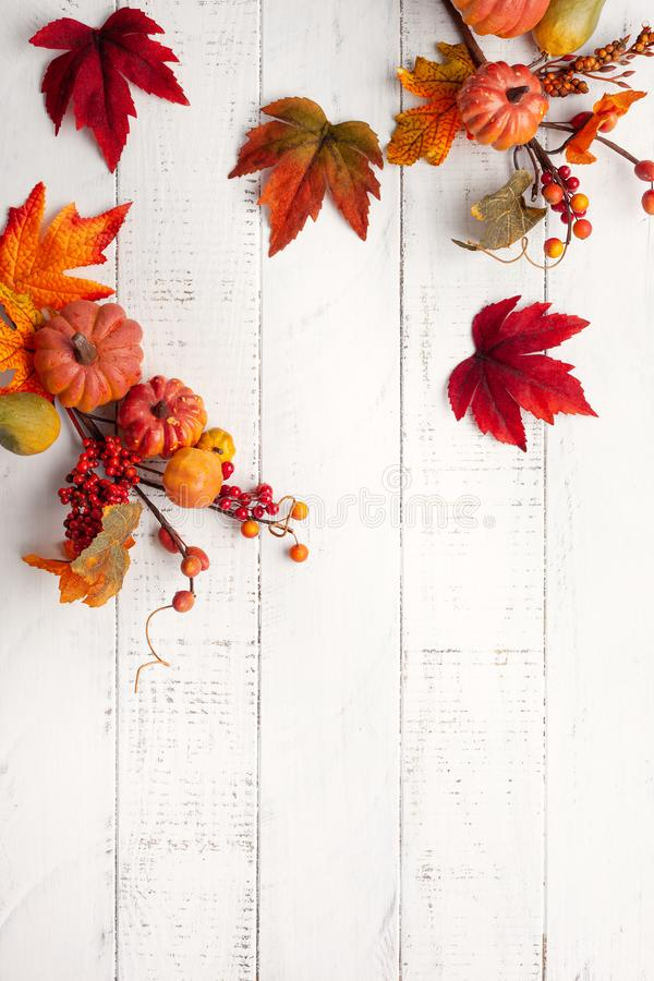Festive autumn decor from pumpkins, berries and leaves on a white  wooden background. Concept of Thanksgiving day or Halloween. royalty free stock photography