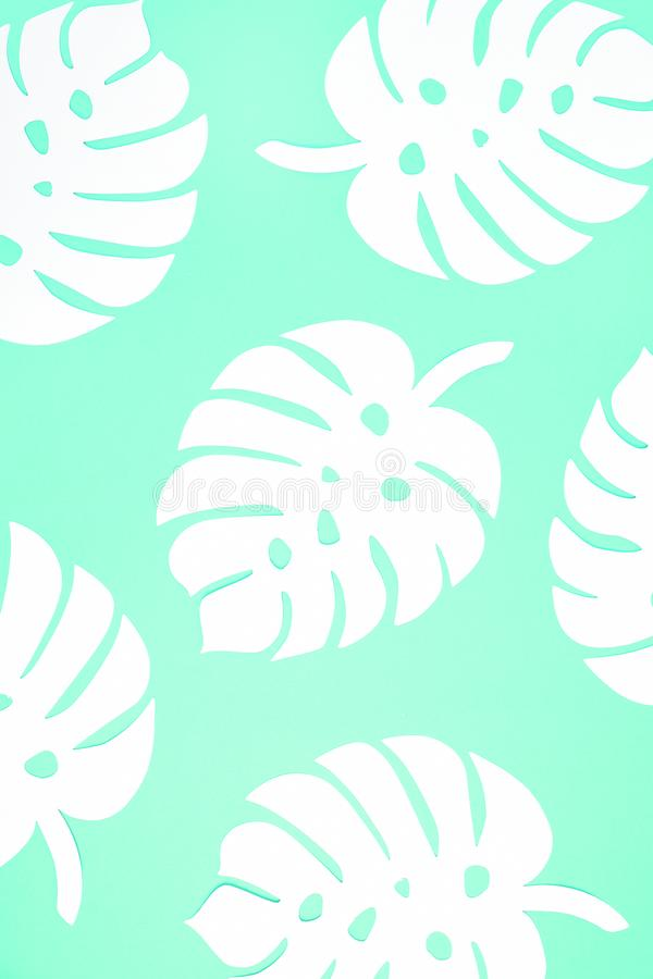 Festive background. Tropical theme. Summer. Hawaii. Party, birthday. View from above. royalty free stock photo