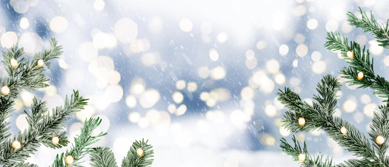 Festive blurry snowy winter background with fir twigs and circular lights royalty free stock photo