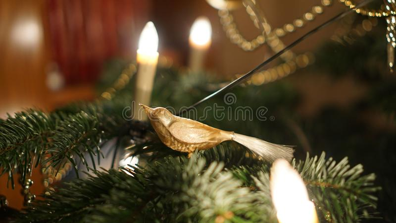 Festive Christmas decoration with Christmas Tree and Presents in Fulda, Germany.  stock photos