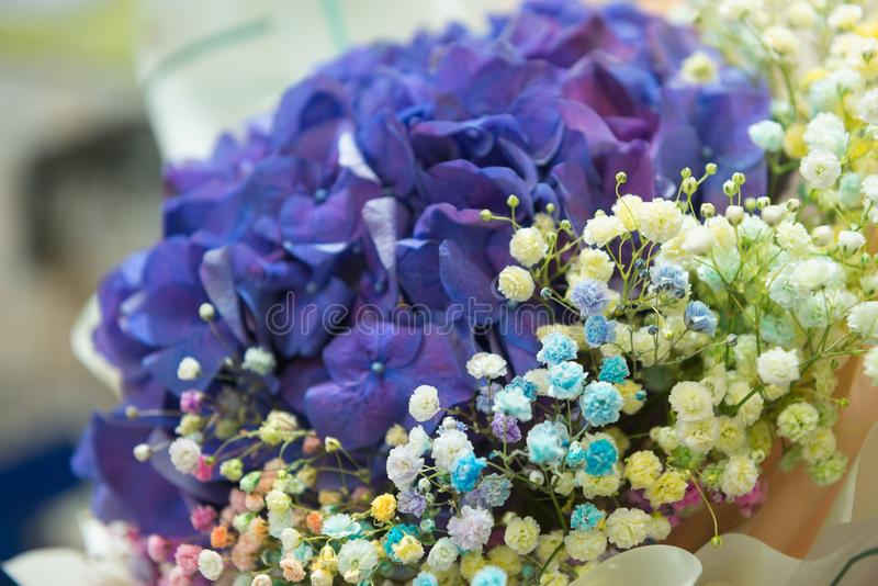 Festive delicate bouquet of blue hydrangea and colorful gypsophila, selective focus. Floristics and bouquets, greetings and stock images