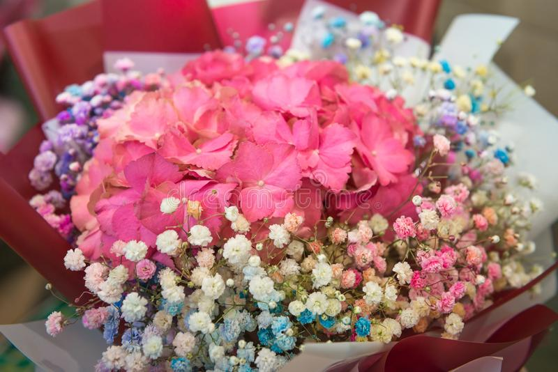 Festive delicate bouquet of pink hydrangea and colorful gypsophila, selective focus. Floristics and bouquets, greetings and royalty free stock photography