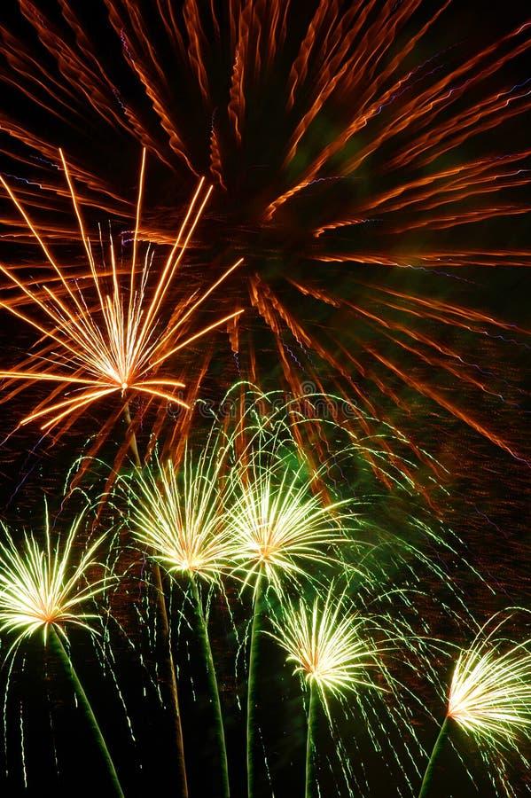 festive firework στοκ εικόνα