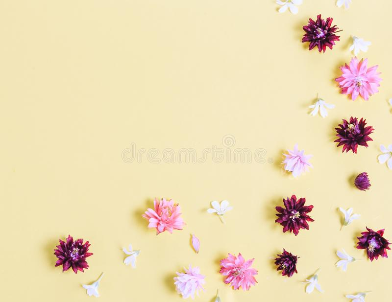 Festive flower composition on the yellow background. Overhead view stock images