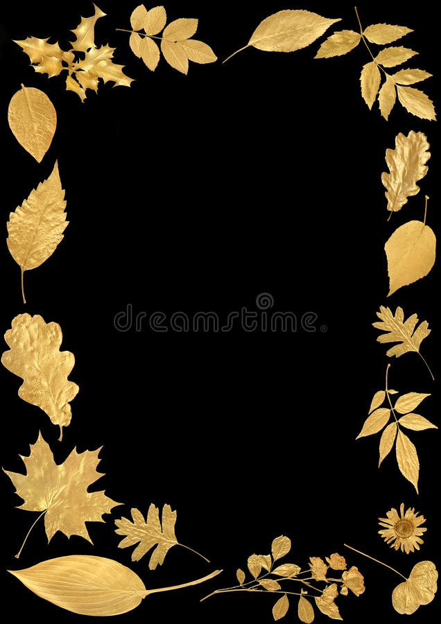 Free Festive Golden Leaf Border Royalty Free Stock Image - 11436846
