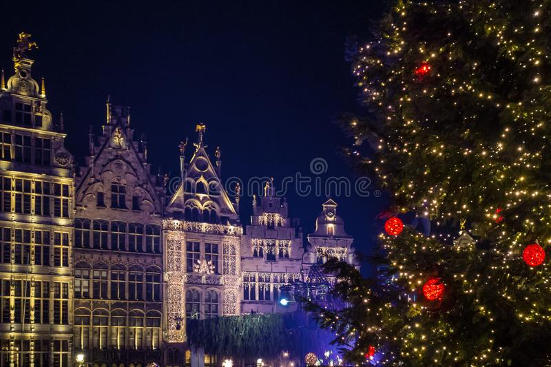 Festive lights and christmas tree on the main square of Antwerpen. Festive lights on traditional belgian buildings and christmas tree on the main square of royalty free stock images