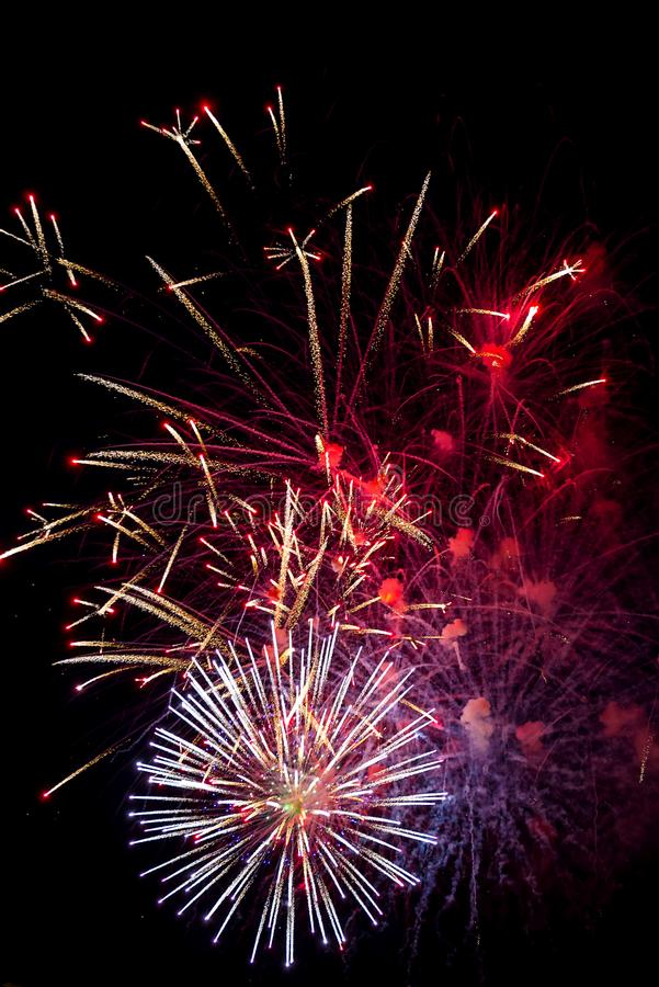 Festive multicolored salute on the background the dark night sky. Salute from the pyrotechnics royalty free stock images