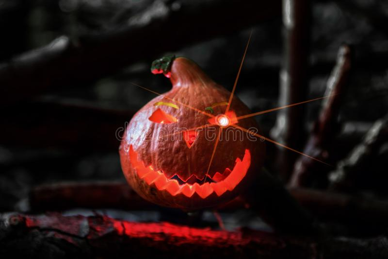 Festive pumpkin for Halloween Jack`s lantern in the night forest illuminated by magical light and glitter in the eye stock photography