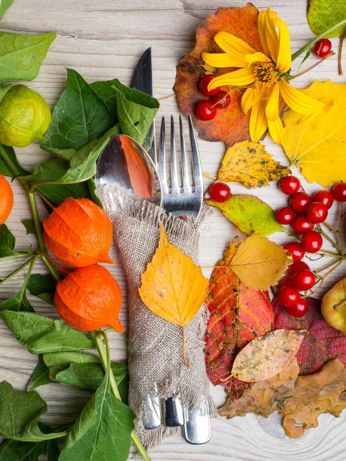 festive thanksgiving autumn cutlery setting and arrangement of colorful fall leaves, red berries royalty free stock photo