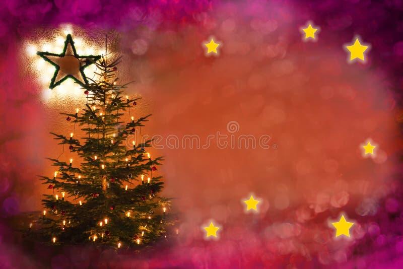 Festive xmas background with christmas tree and shiny stars royalty free stock image