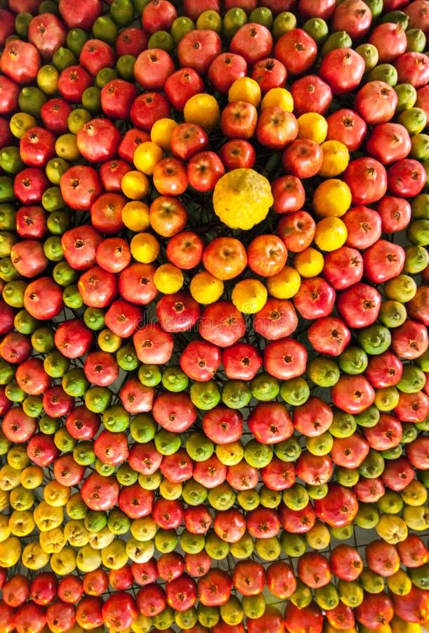 Festively frukter dekorerat tak i samariternahus arkivfoton