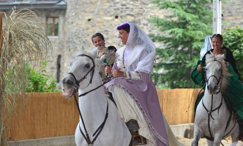 festiwal oznacza średniowiecznego niebo zdjęcie stock