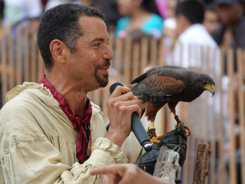 2016 festiwalu Średniowieczny sokolnik 15 zdjęcia royalty free