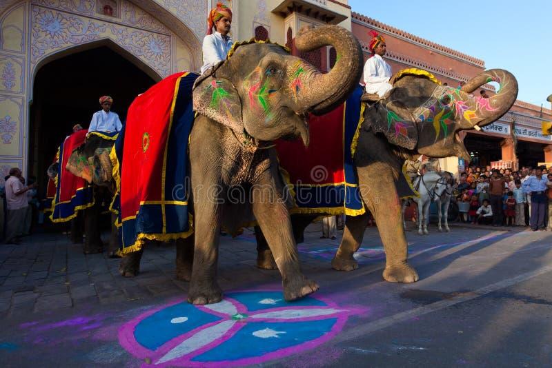 festiwalu gangaur Jaipur fotografia royalty free