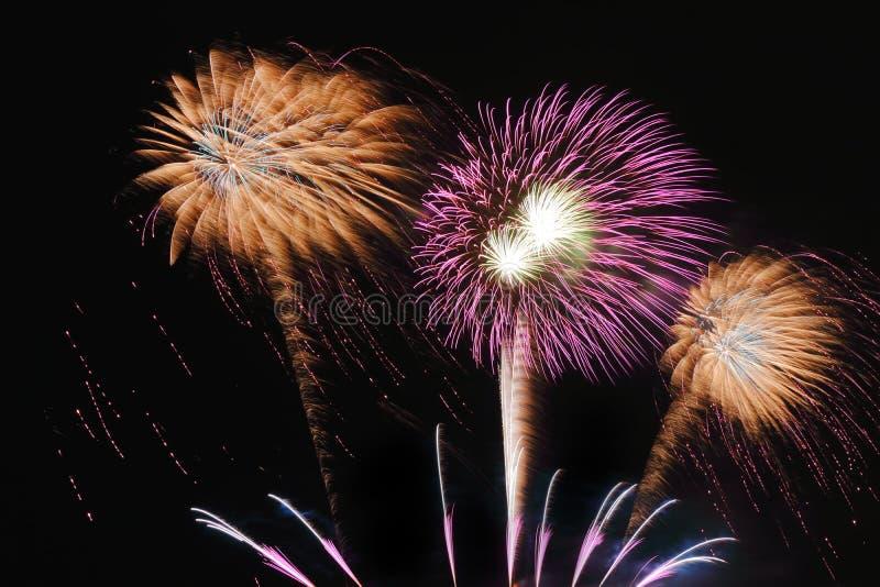 Festliche bunte Feuerwerke auf Hintergrund des nächtlichen Himmels Feierlicher Feiertag lizenzfreies stockbild