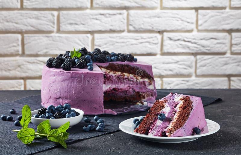 Festlicher Kuchen-, Blaubeer- und Brombeerschwammkuchen lizenzfreie stockfotografie