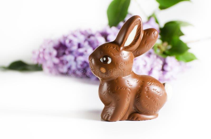 Festliches Stillleben mit Schokoladen-Osterhasen und lila Blumen stockfotos