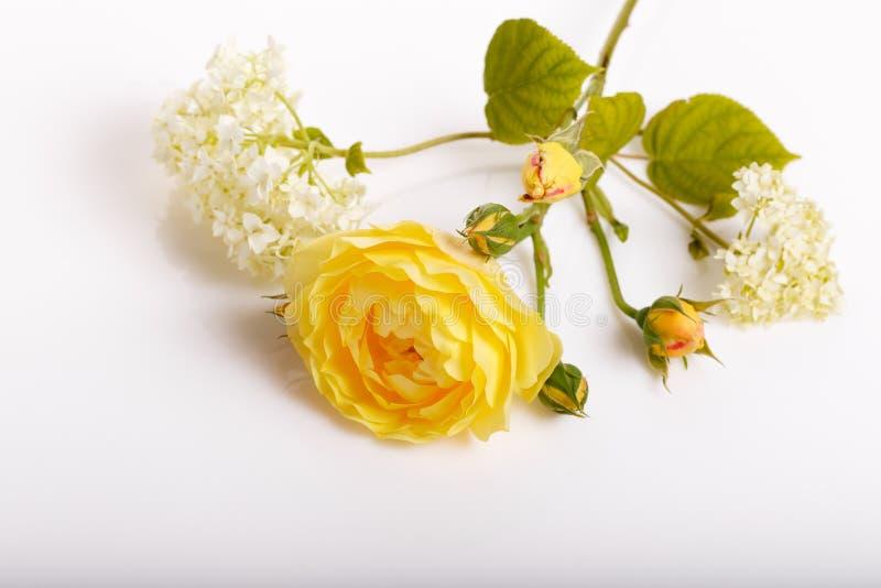 Festlig blommasammans?ttning p? den vita bakgrunden ?ver huvudet sikt royaltyfria bilder