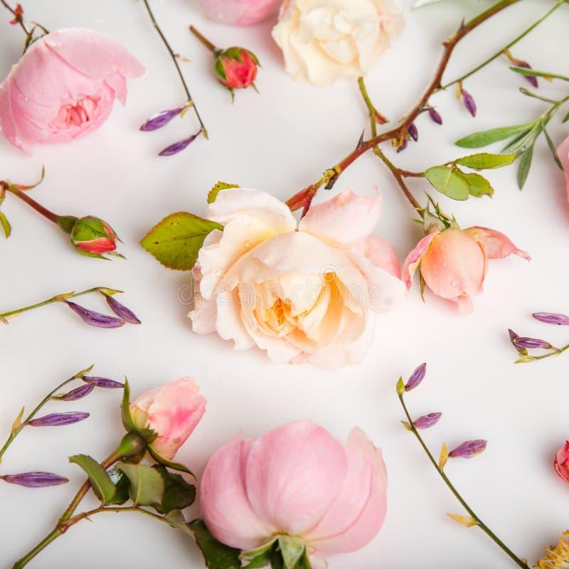 Festlig blommasammans?ttning p? den vita bakgrunden ?ver huvudet sikt royaltyfria foton