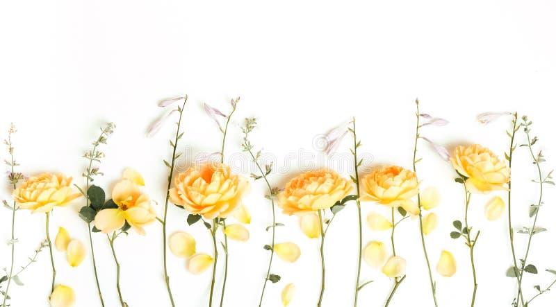 Festlig blommasammans?ttning p? den vita tr?bakgrunden ?ver huvudet sikt royaltyfri foto