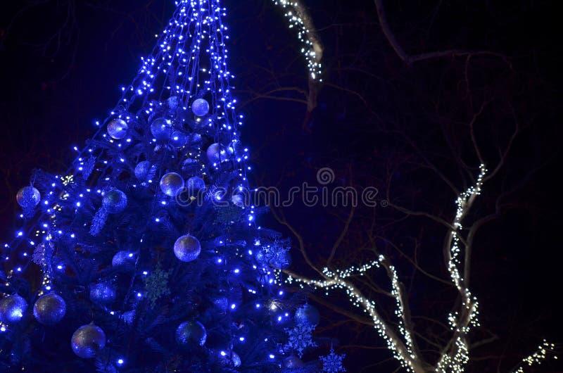 Festlig dekorerad julgran med blåa ledde ljus royaltyfri bild