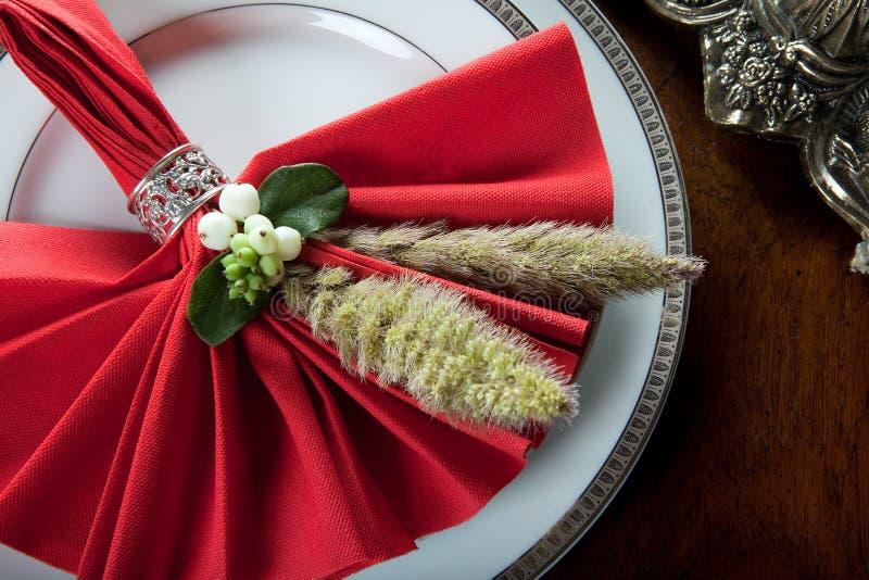 festlig servett för 5 jul royaltyfri fotografi