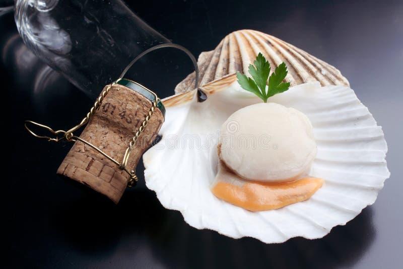 Feston cru frais d'isolement - fruits de mer photographie stock