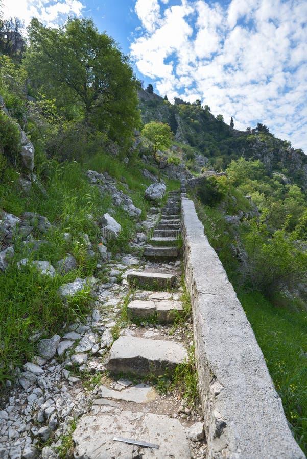 Festung von Kotor stockfoto