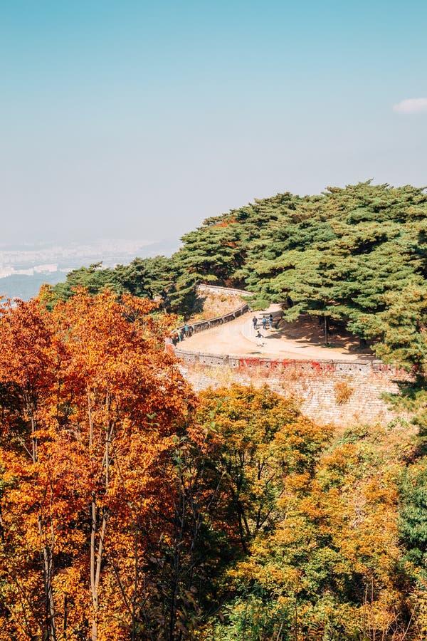 Festungs- und Herbstahornbäume Namhansanseong in Korea stockbilder