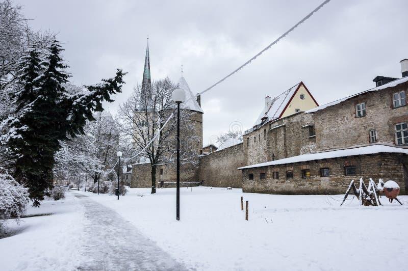 Festungswand von Tallinn stockfotografie