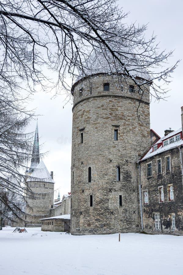Festungswand von Tallinn stockbilder