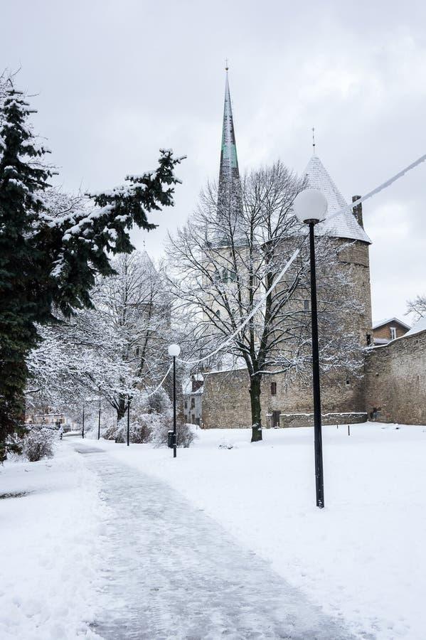 Festungswand von Tallinn lizenzfreie stockfotografie